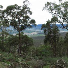 Mount Granya State Park